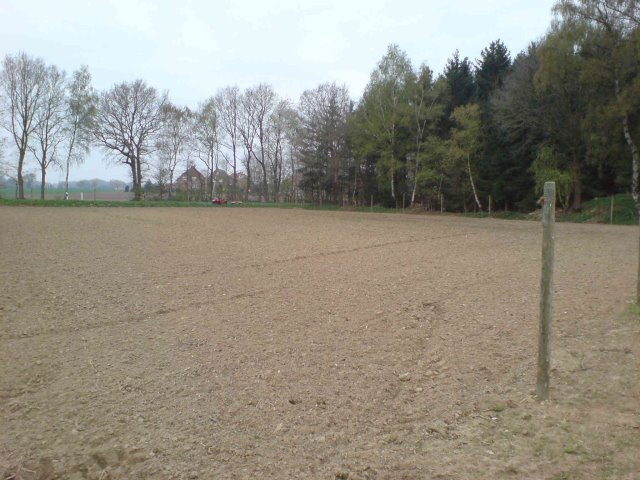 Aufpflanzen der ersten Freilandfläche III