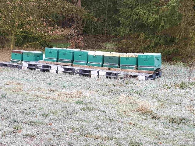 Bienenstand Vinnen im Winter